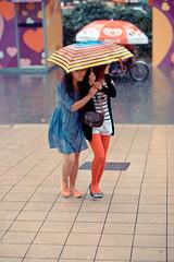 _DSC8829 (Elmogran) Tags: street singapore orchard