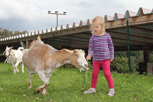 Mädchen mit Ziege