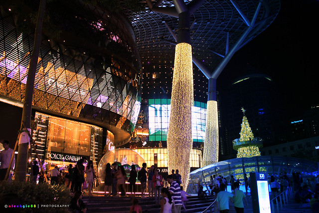 """ Magnificent ION Orchard """