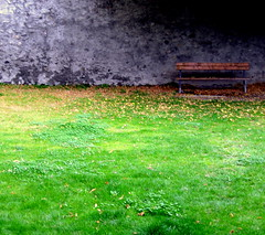(Elaichi-Ohyeah) Tags: wood autumn orange france alps green grass leaves stone village queyras guillestre piratetreasure diamondclassphotographer flickrdiamond colourartaward artlegacy top25green