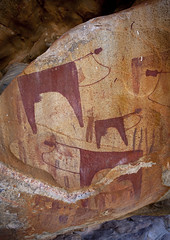 Laas Geel Rock Art Caves, Paintings Depicting Cows Somaliland (Eric Lafforgue) Tags: africa color tourism archaeology animals vertical painting graffiti cow patterns culture afrika somali endangered ochre fresco humanbeing touristattraction rockart somalia preservation somaliland brownish afrique reddish artsandcrafts hornofafrica muralpainting rockshelter patrimony 3674 somalie britishsomaliland somali wellconserved photographphoto  cavegrotto cowlivestock  szomlia   soomaaliland frencharchaeologists prehistoricneolithic  naasahablood interiorindoors graffitimuralpainting laasgeellasgeel laasgeelsite laasgaalcaves