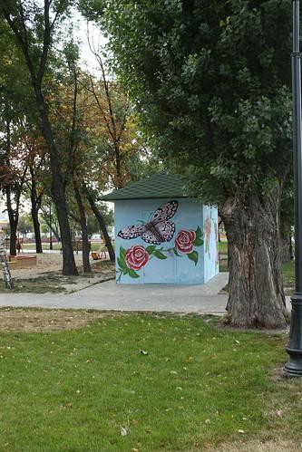 Бабочка и розы ©  FAndrey