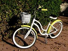 New Bike (sgrace) Tags: california new white bike bicycle shiny basket week1 cruiser aptos msh0112 msh01121 52of2012