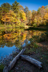 Dockery Lake Reflections (John Cothron) Tags: 5dmarkii 5d2 5dii 5dmkii americansouth cpl canoneos5dmkii chattahoocheeoconeenationalforest cothronphotography dahlonega distagon2128ze distagont2821ze dixie dockerylake dockerylakerecreationarea dockerylaketrail georgia johncothron lumpkincounty southatlanticstates southernregion trails thesouth us usa unitedstatesofamerica waterscreek zeissdistagont2821ze afternoonlight autumn calm circularpolarizingfilter clearweather creek environment fall flowing forest freshwater hiking lake lakeshore landscape log longexposure nature outdoor outside plant plants protected reflection reservoir river scenic serene stream tranquil tree trees water img06046111016 ©johncothron2011 dockerylakereflections