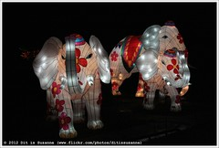 Confucius China Light Festival (Dit is Suzanne) Tags: storm netherlands rain iso3200 evening wind availablelight nederland f10 avond hortusbotanicus regen haren   views50 img6199   ditissuzanne 13200sec beschikbaarlicht canoneos40d hortusharen  sigma18250mm13563hsm confuciuschinalightfestival 05012012