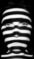 11/366 ~ prisoner (Ly (Lyanne Wylde Photography)) Tags: bw me sunshine photography mono stripes tiger sp bite blinds wylde growl prisoner lyanne lyannewylde lyannewyldephotography