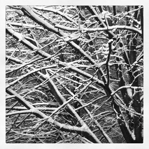 Winter finally begins