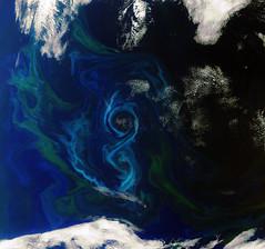 Earth from Space: A southern summer bloom (europeanspaceagency) Tags: european agency esa phytoplankton meris southatlantic algalbloom europeanspaceagency envisat