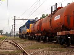 transap maanero - transap at the morning (elmetrino 2) Tags: chile del tren locomotive paine egs acido emd maanero transap