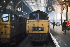 At the buffer stops, Paddington, November 1975 (David Rostance) Tags: london railwaystation western paddington class31 dieselhydraulic class52 31286 d1053