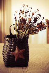 Basket Star (Linda's Fotos) Tags: flowers stilllife star basket bouquet weave