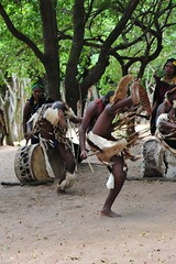 Zulu dancers kick their feet up while dancing (D70) Tags: feet up drums village dancers dancing kick barefeet drummers zulu dumazuluvillage