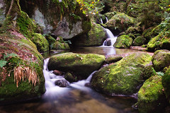 be water my friend (Dennis_F) Tags: black tree green colors zeiss forest waterfall woods rocks wasserfall