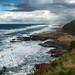 Oregon Coast II