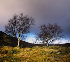 The unpredictable weather (Arnfinn Lie, Norway) Tags: trees light nature weather norway dale rogaland a77 wow1 wow2 wow3 wow4 zeiss1680mm arnfinnlie musictomyeyeslevel1