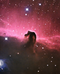 Horsehead Nebula (B33) LRGB+HA (Terry Hancock www.downunderobservatory.com) Tags: county camera sky color monochrome wheel night dark stars photography mono pier backyard fotografie tech photos space shed science images off astro stephen observatory telescope filter nebula terry astronomy imaging hancock alpha ccd universe f8 ic434 horsehead axis hydrogen paramount luminance osc wessling teleskop astronomie byo astronomers deepsky newaygo b33 guider starlightxpress Astrometrydotnet:status=solved qhy5 at10rc Astrometrydotnet:version=14400 at2ff mks4000 qhy9m gt110s wwwdownunderobservatorycom Astrometrydotnet:id=alpha20120178463248
