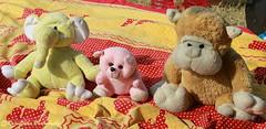 Ganesh, Pinku, Bandru (RajivSinha Photography) Tags: toy toys photography rajiv sinha rajivsinhaphotography
