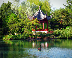 A Touch of Asia (Sandra Leidholdt) Tags: canada building architecture reflections garden asian pagoda pond montral quebec montreal hexagonal chinese jardin goose pavilion kiosque serene chinesegarden chinois botanicalgarden reflexos canadagoose reflejos pagodas reflexionen pagode jardinbotanique montrealbotanicalgarden jardinbotaniquedemontral sandraleidholdt jardindechine lejardindechine sandyleidholdt kiosquedeladouceurinfinie kiosqueofinfinitesweetness infinitesweetness