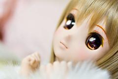 IMGP0290 (iris_memories) Tags: doll dream custom dd dollfie 06 ddh dollfiedreamdd