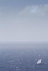 Sail away (MartinEWP) Tags: sea beach water canon amazing interesting antigua 7d boating caribbean cs5 eos7d