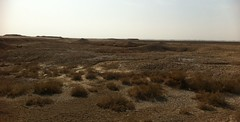 Salt Pans, Basrah, Iraq