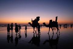 Camels at sunset (Lil [Kristen Elsby]) Tags: pakistan sunset reflection beach silhouette asia camel getty karachi topv4444 topf100 camels clifton sindh gettyimages southasia cliftonbeach canong12