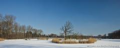 Zuiderpark, Rotterdam (PvRFotografie) Tags: snow ice nature rotterdam sneeuw natuur za ijs carlzeiss zuiderpark variosonnar247028za variosonnartdt28222470 zeisspolfilter