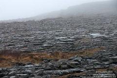 Landscape of the Burren, Ireland (Elizabeth Buie) Tags: ireland burren geology countyclare
