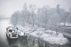 foggy morning (Tafelzwerk) Tags: street bridge schnee trees winter snow holland ice water fog river maastricht boot boat nikon wasser ship nebel foggy maas brcke fluss eis bume schiff niederlande strase nikkor35mmf18 d7000 nikond7000 tafelzwerk tafelzwerkde