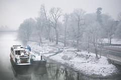 foggy morning (Tafelzwerk) Tags: street bridge schnee trees winter snow holland ice water fog river maastricht boot boat nikon wasser ship nebel foggy maas brcke fluss eis bume schiff niederlande strase nikkor35mmf18 d7000 nikond7000 tafelzwerk tafelzwerkde