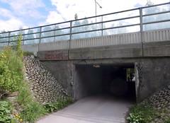 ...nothing to say. (neppanen) Tags: streetart suomi finland underpass graffiti helsinki tunel tunneli munkkivuori ays munkka alikulku discounterintelligence sampen helsinginkilometritehdas
