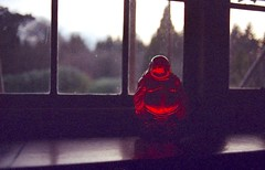 red buddah (Stephanie Overton) Tags: uk red england tree film glass 35mm kent forrest pentax object explore buddah p30