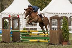 DSC09732_s (AndiP66) Tags: springen hindelbank jegensdorf 2016 23april2016 pferd horse schweiz switzerland kantonbern cantonberne concours wettbewerb horsejumping equestrian sports springreiten pferdespringen pferdesport sport sony sonyalpha 77markii 77ii 77m2 a77ii alpha ilca77m2 slta77ii sony70400mm f456 sony70400mmf456gssmii sal70400g2 andreaspeters jegenstorf bern ch