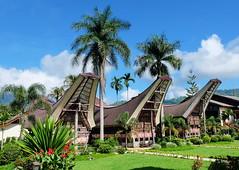 Tongkonan Traditional House, Tana Toraja, South Sulawesi - Indonesia (sheing.coe) Tags: house indonesia traditional culture fujifilm sulawesi tanatoraja toraja tongkonan visitindonesia fujifilmxm1