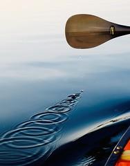 Paddle Drops (deanspic) Tags: blue drops wake dynamic circles paddle indigo vivid canoe ring rings canoeing paddling concentric gunnel 18100 g3x photopaddle 100paddles