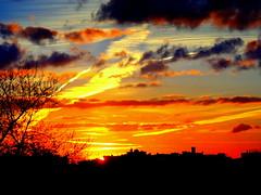 New York Sunset (dimaruss34) Tags: newyork brooklyn image dmitriyfomenko
