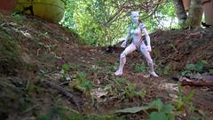 Natural Habitat (tlm_pr) Tags: marvellegends whitetiger