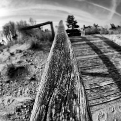 Struktur (dubdream) Tags: wood blackandwhite bw white black texture beach strand nikon focus sigma balticsea fisheye explore d200 schwarzweiss ostsee 10mm dubdream