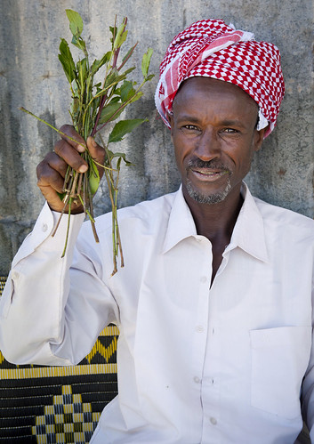 Joy of the day (like every day): Qat has arrived! Somaliland