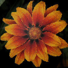 stain glass flower (Canon-Kid) Tags: flowerscorrillion