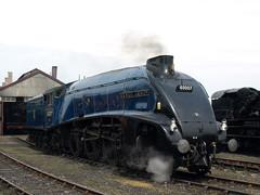 60007 Didcot (Andy Thomas 5910) Tags: rail railway trains class british sir a4 nigel lner gresley 60007