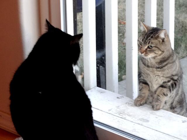 KENO has a visitor