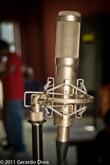 Peluso R14 ribbon mic/microphone (soundweavers) Tags: d50 microphones mic ribbonmic studiomic ribbonmicrophones studiomicrophones