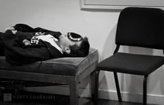nightshade (Lisa Ouellette) Tags: berkeley nap nightshade yarmulke kippa menschoir