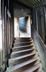 Welcome upstairs (DameBoudicca) Tags: wood autumn house lund fall students leaves stairs concrete leaf sweden dorm schweden steps sverige withered suecia suède svezia vildanden bengtedman afbostäder