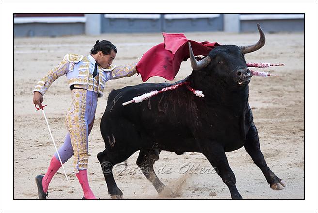 Fandiño 4 (ollero23) Tags  madrid españa europa toros toro muleta torero  montera toreros lasventas 78514d1de49