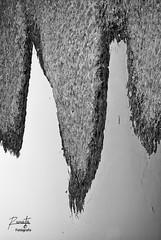Las dos torres (Ivn R. Cabrera) Tags: blackandwhite abstract blancoynegro mexico dgo abstracto durango mex laferreria