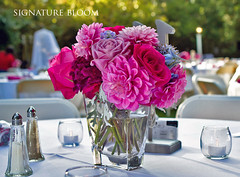Wedding Flowers Fremont, Pink Centerpieces (Signature Bloom) Tags: pictures pink dahlia flowers wedding decorations summer flower floral rose for design designer sanjose images fremont reception designs florist siliconvalley weddings bridal centerpiece decor peninsula southbay ideas weddingflowers weddingphotos arrangements hotpink receptions floraldesign sanjoseca florists centerpieces weddingideas outdoorwedding fremontca bridalflowers summerwedding weddingdecorations 94539 pinkwedding floraldesigner flowerdesign casualwedding 95121 weddingflorist modernwedding receptionideas weddingfloral weddingvendor simplewedding centerpiecesforweddings flowersforwedding hotpinkwedding sanjoseflorists sanjoseweddingflowers signaturebloom wwwsignaturebloomcom sanjoseweddingflorist bridalflorist weddingfloristsanjose weddingflowerssanjose weddingflowerssanjoseca centerpiecesideas sanjoseweddingfloral weddingfloralsanjoseca centerpiecesideasforwedding weddingfloristfremont