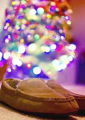#296 | New Slippers = Successful Christmas (terrypresley) Tags: auto christmas holiday tree 35mm carpet lights nikon shoes bokeh f18 slippers blend houseshoes