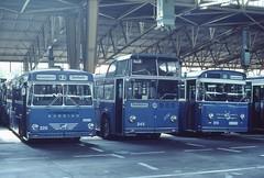 1982-06, Zürich, Busgarage Oerlikon (Hagenholz) (Fototak) Tags: zürich autobus 515 226 245 vbz büssing hagenholz fbw tüscher hochlenker 5guka